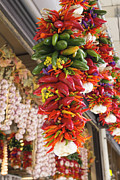 Hot Peppers Posters - Colorful Hot Chili Peppers and Garlic Bunches Poster by JPLDesigns