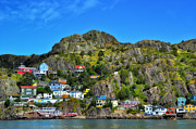 Newfoundland Prints - Colorful houses in Newfoundland Print by Steve Hurt