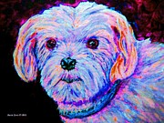 Beagle Puppies Paintings - Colorful Impressionistic Maltese by Annie Zeno