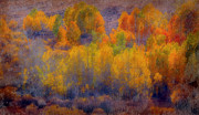Autumn Landscape Mixed Media Prints - Colorful Landscape Print by Irina Hays