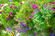 Grow Inside Prints - Colorful Large Hanging Flower Plants 3 Print by Lanjee Chee