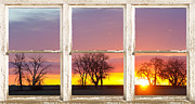 Room With A View Framed Prints - Colorful Morning White Rustic Barn Picture Window Frame View Framed Print by James Bo Insogna