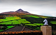 Lush Vegetation Posters - Colorful Patchwork of Sugarloaf Mountain. Ireland Poster by Jenny Rainbow