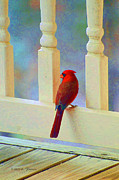 Balusters Photos - Colorful Redbird by Kenny Francis