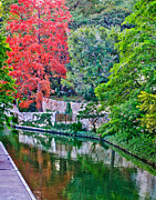 San Antonio River Walk Framed Prints - Colorful Riverwalk Framed Print by David and Carol Kelly