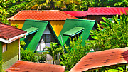 Banana Tree Photos - Colorful Rooftops in Costa Rica by Michelle Wiarda