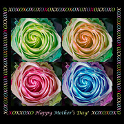 Mothers Love Framed Prints - Colorful Rose Spirals Happy Mothers Day Hugs and Kissed Framed Print by James Bo Insogna