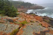 Seacoast Prints - Colorful Seacoast - Acadia Print by Stephen  Vecchiotti