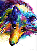 Custom Dog Portrait Paintings - Colorful Sheltie Dog portrait by Svetlana Novikova