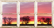 Office Space Prints - Colorful Tree Lined Horizon White Barn Picture Window Frame  Print by James Bo Insogna