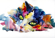 Watercolor Cat Paintings - Colorful Tubby cat painting by Svetlana Novikova