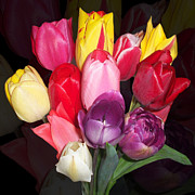 Sandy Mertens - Colorful Tulip Bouquet