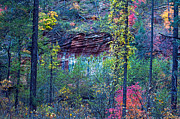 Oak Creek Photo Originals - Colorful Wall by Brian Lambert