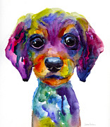 """texas Artist"" Painting Framed Prints - Colorful whimsical Daschund Dog puppy art Framed Print by Svetlana Novikova"