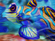 Tropical Fish Digital Art Posters - Colors Below Poster by Jack Zulli