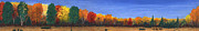 Fall Colors Autumn Colors Pastels Posters - Colors of Fall Poster by George Burr