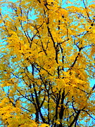 Debbie Metal Prints - Colors of Fall - Smatter Metal Print by Deborah  Crew-Johnson