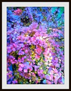 Adela Kitty Metal Prints - Colors Of The Rainbow Metal Print by Adela Kitty