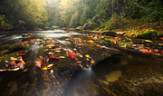 Matt Tilghman - Colors on the Chattooga
