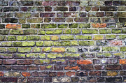 Tim Gainey - Colourful London Bricks