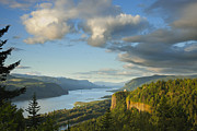 Dan Thornberg Acrylic Prints - Columbia River Gorge at sunset Acrylic Print by Dan Thornberg