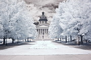 Blue Grey Infrared Art Prints Framed Prints - Columbia South Carolina Infrared Landscape  Framed Print by Kathy Fornal