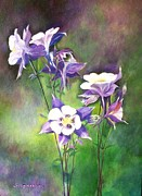 Floral Drawings Originals - Columbine by YongWoon Suh