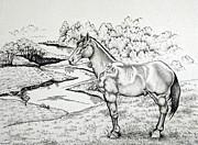 Comanche Ink Pointillism Study Print by Catherine Henningham Puttick