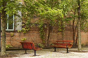 Park Benches Photo Originals - Come Sit With Me by Hany Jadaa