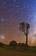 Starscape Prints - Come to my Garden Print by Basie Van Zyl