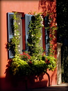 Charleston Houses Prints - Come To My Window Print by Karen Wiles