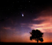 Comet Hale-bopp Photos - Comet Hale-Bopp at Sunrise. Lake Kissimmee. by Chris  Kusik