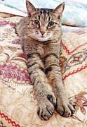 Judy Via-Wolff - Comfy Cat