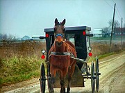 Amish Photographs Posters - Coming My Way Poster by Julie Dant