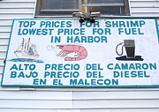Sign In Florida Photo Framed Prints - Commercial Shrimp Business in Ft Myers Florida Posted Sign Framed Print by Robert Birkenes