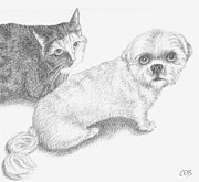 Doggy Drawings Framed Prints - Commission - Missy and Teddy Framed Print by Conor OBrien