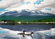 Stella Sherman Prints - Common Loon on Togue Pond by Mount Katahdin Print by Stella Sherman