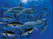 Striped Marlin Prints - Companions Off00117 Print by Carey Chen