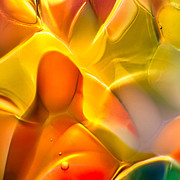 Macro Photos Glass Art - Companionship by Omaste Witkowski