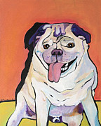 White Dog Framed Prints - Conan Framed Print by Pat Saunders-White
