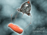 Device Digital Art Prints - Conceptual Image Of A Nanobot Injecting Print by Stocktrek Images