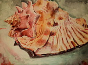 Jeffrey S Perrine - Conch Contours