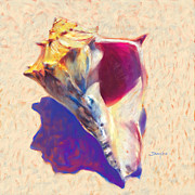 Seashell Art Prints - Conch Shell - Seashell Painting  Print by Mike Savlen