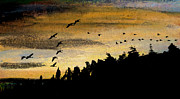 Canadian Geese Pastels - Conclusion of the Day by R Kyllo