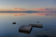 Salton Sea Prints - Concrete Floats Print by Peter Tellone