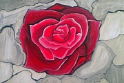 Concrete Paintings - Concrete Rose by Marisela Mungia