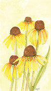 Catherine Basten - Coneflower Plant