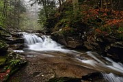Conestoga Photos - Conestoga Falls by Mike Farslow