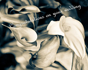 Cheers Prints - Congratulations on your wedding greeting card Print by Eti Reid