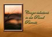 Jeanette K - Congratulations to the Proud Parents Grass Sunset